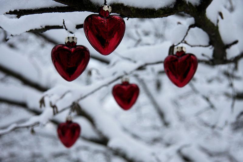 image amour et noel