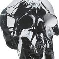 Damien Hirst, Hypnotic Head, Household gloss on plastic skull, : 21 x w: 14 x d: 14 cm. Other Criteria