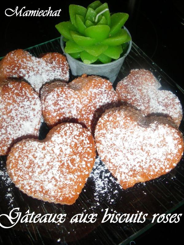 Petits gâteaux aux biscuits roses
