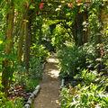 Les pergolas cachent les murs qui limitent le jardin