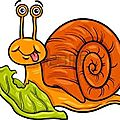 Escargot c
