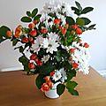 Harmonie orange et blanche