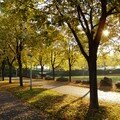 Courcouronnes en automne