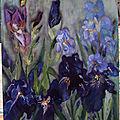Peinture les iris
