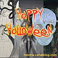 Happy halloween sur vimeo.com