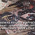 MES DIVERS RITUELS D'<b>AFFECTION</b>