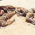 LA TRAGÉDIE DES <b>MIGRANTS</b> : Les Algériens indifférents.