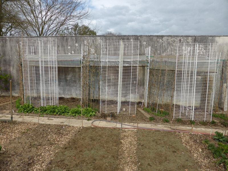 31- grilles-abri tomates (6)