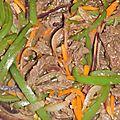 Korean barbecue (불고기/bulkogi)