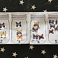 Livre à compter les papillons
