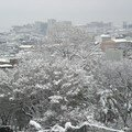 Coree du sud - dongincheon - et voici venir la neige