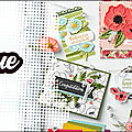 NOUVEAU CATALOGUE PRINTEMPS ETE <b>STAMPIN</b>'<b>UP</b> ET SALE A BRATION