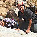 Desierto: un face à face haletant dans le désert sud-californien