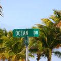 <b>Miami</b> Vice