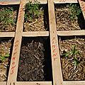 Des palettes pour jardiner et décorer