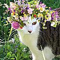 PhotoFunia_1480182425