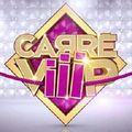 Le <b>Carré</b> <b>Viiip</b> ferme ses portes