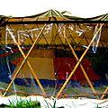 tribu vivace yurtao 27