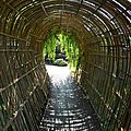 Tunnel ou