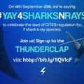 Dimanche 14 septembre 2014, journée phare pour la sauvegarde des requins et des raies !