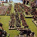 Armée skaven complete (8)