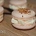 Macarons <b>vanille</b> - praliné
