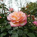 Parcs et Jardins LISLEDON 45 (6)
