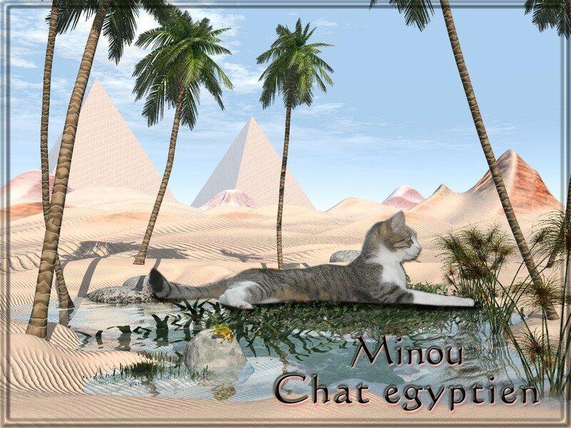 Minou en Egypte