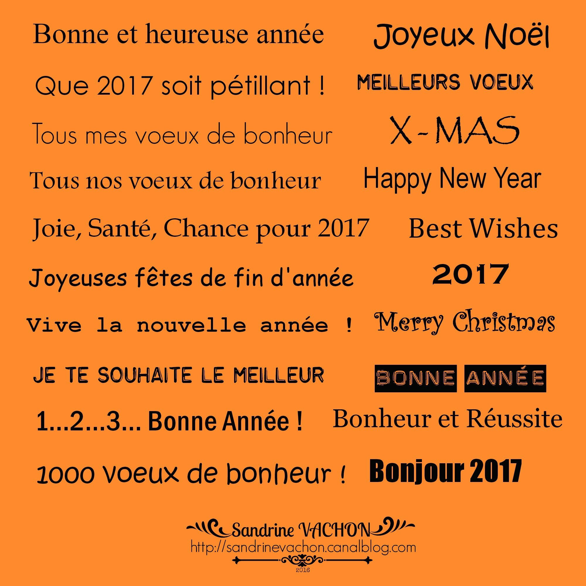 Sandrine VACHON planche 57