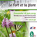 Fort de LIOUVILLE