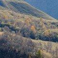Alpes Photographies