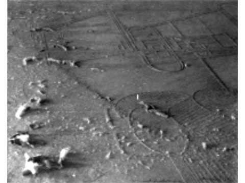 62. Man RAY, Elevage de poussière, 1920.