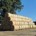 Travaux 2016 foin, enrubannage, moisson, paille, silo