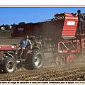 De l'agriculture dans le velin : chassieu