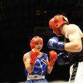 100-732-2-gala de boxe amateur de berck sur mer