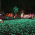 Biarritz, Biarritz en lumières 2016, jardin de lumières (64)