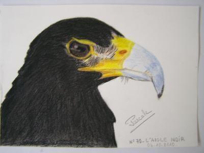 070 L'aigle noir, 14X19 - DISPONIBLE
