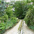 509 - un jardin extraordinaire en bourgogne