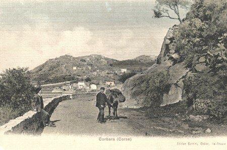 Corbara