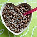 Shiratakis de konjac au soja et au chocolat à 100 kcal (allégé, hyperprotéiné, sans gluten ni sucre ni beurre, riche en fibres)