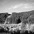 Beskidy, la montagne en noir et blanc