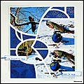 Pairi daiza - paons dans la neige