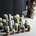 Le monde entier est un cactus... au crochet !! ...ou ma cactusmania diy !