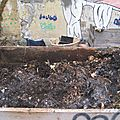 Le compost collectif urbain