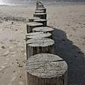 Quelques jours en <b>Baie</b> de <b>Somme</b>, la plage de sable au Crotoy et celle de galets à Cayeux sur Mer, avec cornemuse !