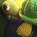 Petite tortue détails tête et pattes avant