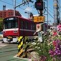 1500系, Shinagawa