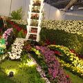 Floralies 095_r1