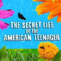 [DL] <b>The</b> <b>Secret</b> <b>Life</b> <b>of</b> <b>the</b> <b>American</b> <b>Teenager</b>