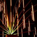 08g -Au coeur de l'chinodermus luminis